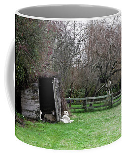 Sheep Shed Coffee Mug