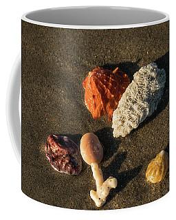 Shell Wave 5 Delray Beach Florida Coffee Mug