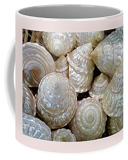 Shells - 4 Coffee Mug