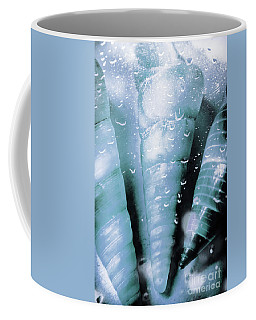 Shells And Ocean Spray Coffee Mug