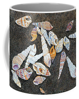 Shells From The Sea Of Galilee Coffee Mug