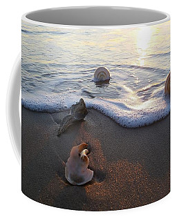 Coffee Mug featuring the photograph Shells Seashore Sunrise by Robert Banach