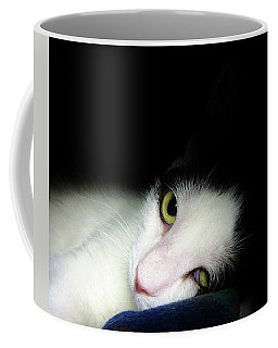 Shelter Cat Coffee Mug