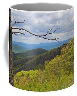 Shenandoah National Park Coffee Mug