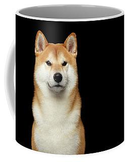 Shiba Inu Coffee Mug by Sergey Taran