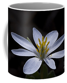 Shimmering Petals Coffee Mug