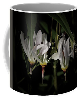 Shooting-star Coffee Mug