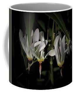 Shooting-star Coffee Mug by Tim Good