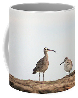 Shorebirds Of Windansea Beach Coffee Mug
