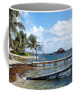 Coffee Mug featuring the photograph Shoreline by Lawrence Burry