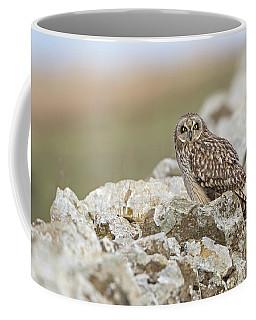 Short-eared Owl In Cotswolds Coffee Mug