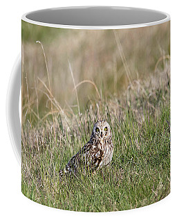 Coffee Mug featuring the photograph Short Eared Owl by Ronnie and Frances Howard