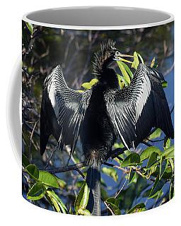 Show Drying Coffee Mug