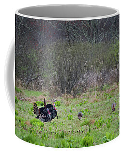 Coffee Mug featuring the photograph Showing Off by Bill Wakeley