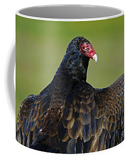 Showing Off Her Wings..... Coffee Mug