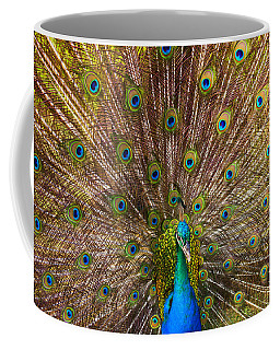 Showing Your Colors Coffee Mug
