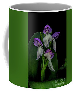 Showy Orchis Coffee Mug by Barbara Bowen