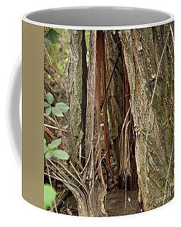 Shredded Tree Coffee Mug