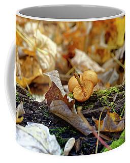 'shrooms Coffee Mug