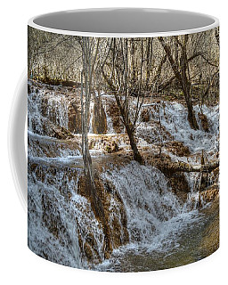 Shuzheng Waterfall China Coffee Mug
