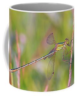 Shy Emerald Damselfly - Lestes Barbarus Coffee Mug