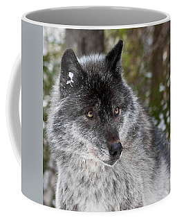 Shy II Coffee Mug