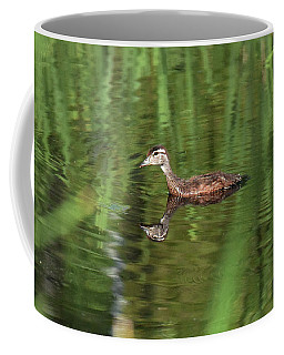 Shy Young Mallard Coffee Mug