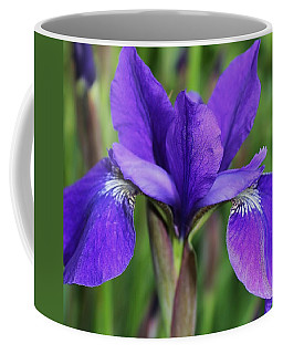 Siberean Iris 2 Coffee Mug by Bruce Bley