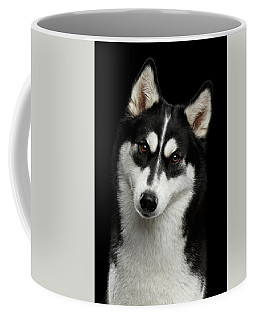 Siberian Husky Coffee Mug by Sergey Taran