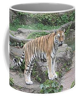 Siberian Tiger Coffee Mug