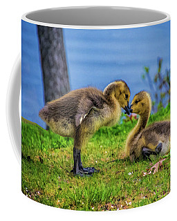 Sibling Love Coffee Mug