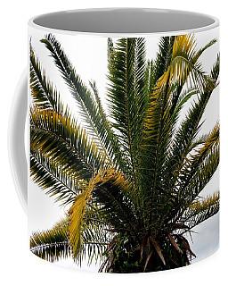 Sideshow Palm Coffee Mug