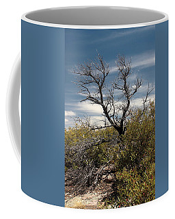 Coffee Mug featuring the photograph Signs Of Life After The Fire by Joe Kozlowski