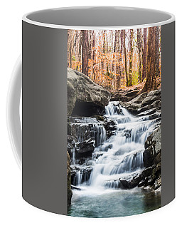 Autumn At Moss Rock Preserve Coffee Mug by Parker Cunningham