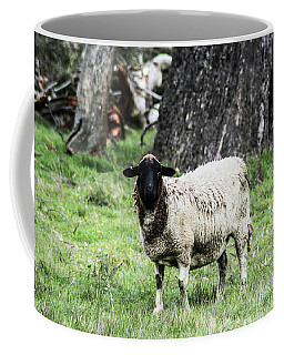 Silence Of The Umm Sheep 1 Coffee Mug