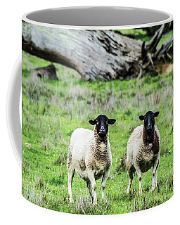 Silence Of The Umm Sheep 2  Coffee Mug