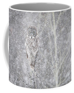 Coffee Mug featuring the photograph Silent Snowfall Landscape by Everet Regal