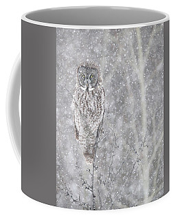 Coffee Mug featuring the photograph Silent Snowfall Portrait by Everet Regal