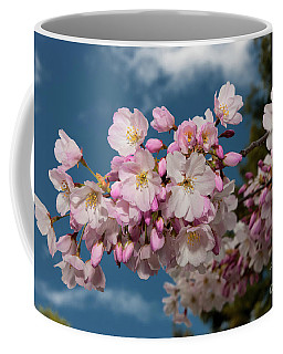 Silicon Valley Cherry Blossoms Coffee Mug