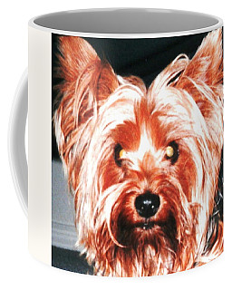 Coffee Mug featuring the photograph Silky Sammie The Yorkie by Belinda Lee