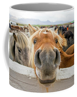 Silly Icelandic Horse Coffee Mug