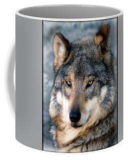 Silly Sancho Coffee Mug