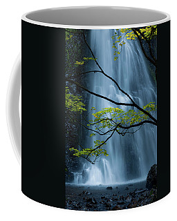 Silver Fall Coffee Mug