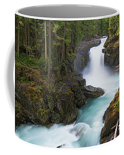 Silver Falls Washington Coffee Mug