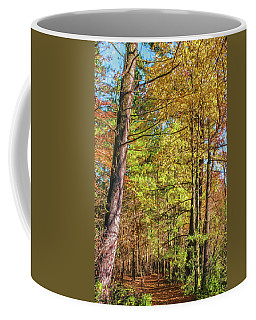 Coffee Mug featuring the photograph Silver Lake Pathway by Trey Foerster