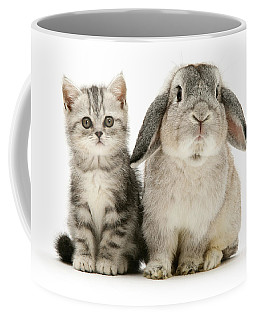 Silver Tabby And Rabby Coffee Mug
