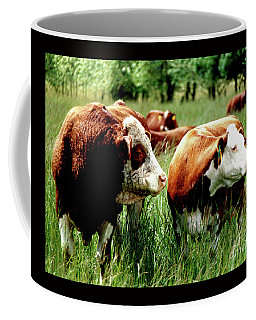 Coffee Mug featuring the photograph Simmental Bull And Hereford Cow by Larry Campbell