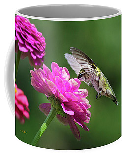 Coffee Mug featuring the photograph Simple Pleasure Hummingbird by Christina Rollo