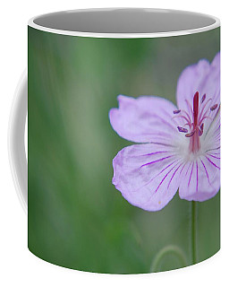 Coffee Mug featuring the photograph Simplicity Of A Flower by Amee Cave