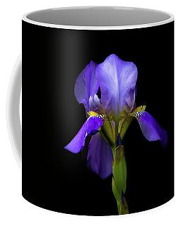 Simply Stunning Coffee Mug by Penny Meyers